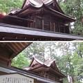 劔神社(福井県越前町)本殿
