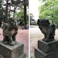 松原神社(敦賀市)