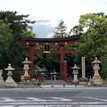 Photos: 氣比神宮(敦賀市)気比の大鳥居