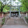 Photos: 金ヶ崎城(敦賀市)金崎宮
