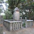 Photos: 金ヶ崎城本丸(敦賀市)金碕古戦場碑