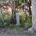 Photos: 金ヶ崎城本丸(敦賀市)月見御殿阯碑
