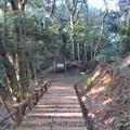 Photos: 金ヶ崎城(敦賀市)二の木戸跡