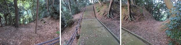 金ヶ崎城(敦賀市)二の木戸跡