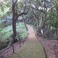 Photos: 金ヶ崎城(敦賀市)一の木戸跡