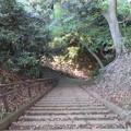 Photos: 天筒山城(敦賀市)大堀切