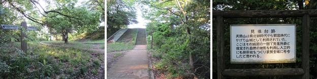 天筒山城(敦賀市)見張台跡