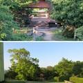 Photos: 天筒山城(敦賀市)見張台跡