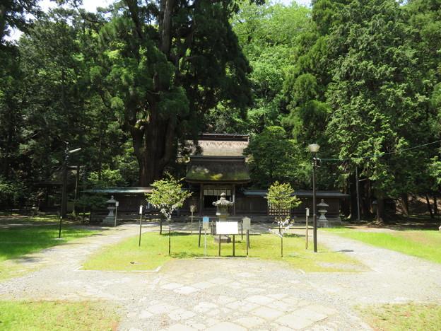 若狭姫神社(若狭彦神社下社。小浜市遠敷)境内