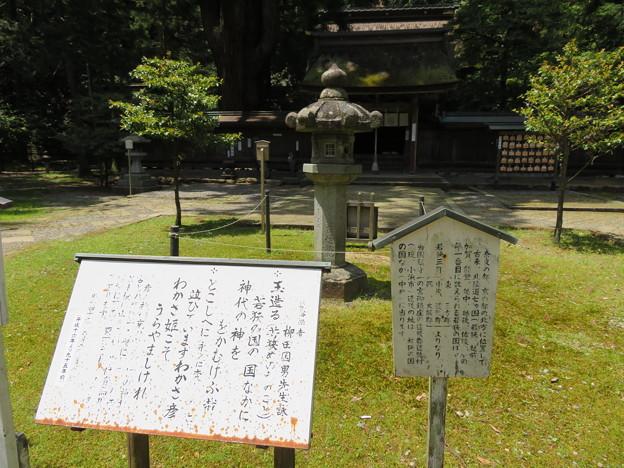 若狭姫神社(若狭彦神社下社。小浜市遠敷)