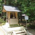 Photos: 若狭彦神社(上社。小浜市竜前)若宮