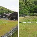 Photos: 空印寺/若狭武田氏居館跡(小浜市)