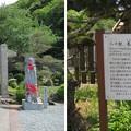 Photos: 佛國寺(小浜市)