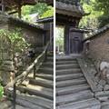Photos: 佛國寺(小浜市)築地塀