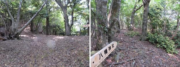 愛宕神社/後瀬山城(小浜市)段郭