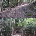 愛宕神社/後瀬山城(小浜市)土橋・虎口