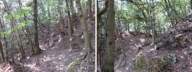 Photos: 後瀬山城(小浜市)本郭搦手?・二郭虎口