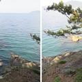 Photos: 高浜城(高浜町)