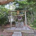 高浜城(高浜町)濱見神社