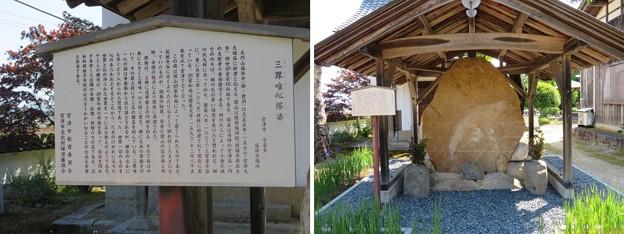 Photos: 盛林寺(宮津市)板碑