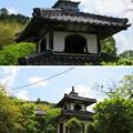 Photos: 興禅寺/赤井直正下館・斎藤利三居館(丹波市)鐘楼