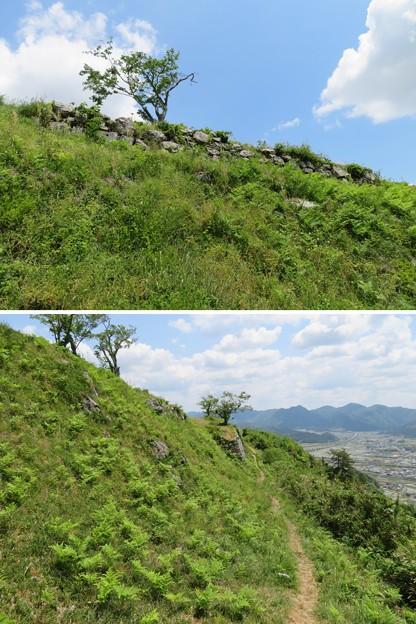 黒井城(兵庫県丹波市)西側犬走り