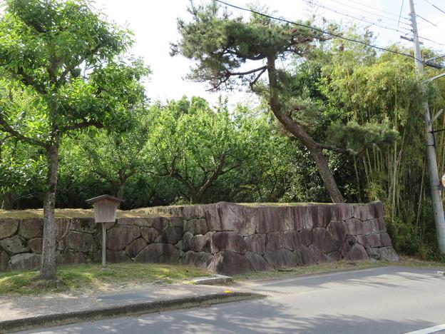亀山城/(宗)大本(亀岡市)櫓台跡