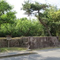 Photos: 亀山城/(宗)大本(亀岡市)櫓台跡