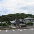 Photos: 葉山マリーナ(葉山町)より南東
