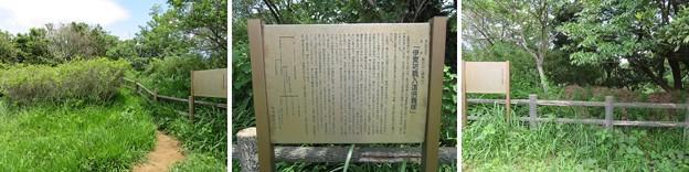 鐙摺城(葉山町)