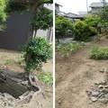 Photos: 一宮館跡(寒川町。梶原氏館)