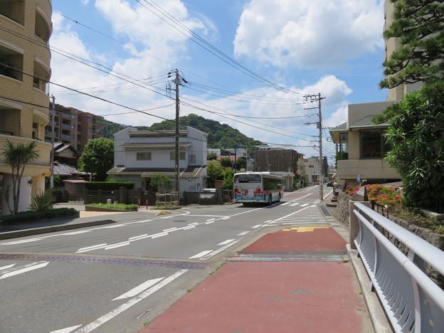 Photos: 県道207号線 森戸海岸線 森戸橋より(葉山町)森戸海岸バス停