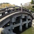 Photos: 13.03.28.鶴岡八幡宮(鎌倉市)太鼓橋