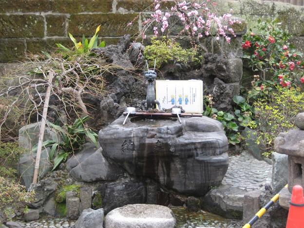 11.03.14.鎮護堂(伝法院通り。台東区)
