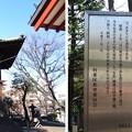 12.02.21.浅草寺(台東区)梵鐘
