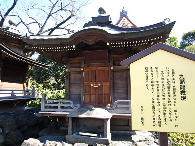 Photos: 12.02.21.浅草寺(台東区)九頭竜権現