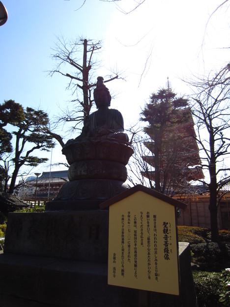 12.02.21.浅草寺(台東区)聖観音菩薩像