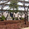 Photos: 12.02.21.浅草寺(台東区)
