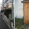 Photos: 10.11.02.旧東海道 台場横丁(品川区北品川)
