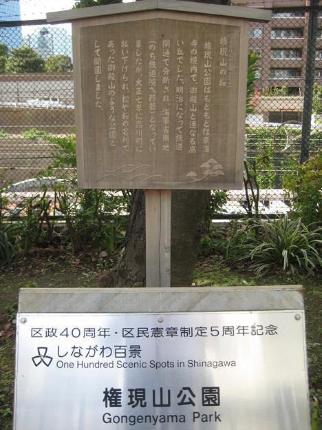 10.11.02.権現山公園(品川区北品川)