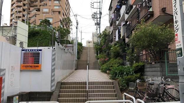 Photos: 御殿山(品川区北品川)