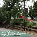 Photos: 権現山公園(品川区北品川)