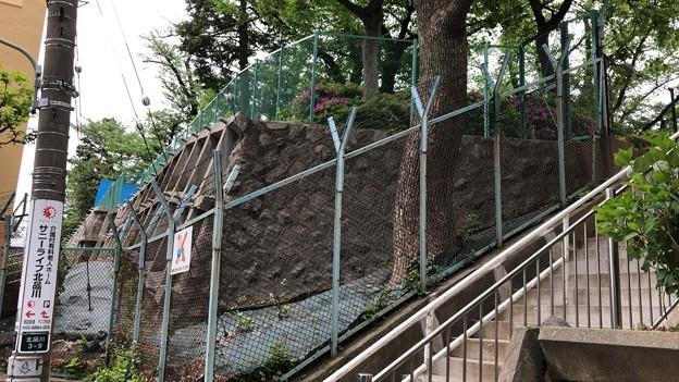 権現山公園(品川区北品川)