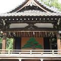 Photos: 10.11.02.品川神社(品川区北品川)神楽殿