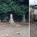 Photos: 13.10.22.東海寺塔頭高源院跡(品川区北品川)板垣家墓所