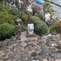 Photos: 14.01.15.品川神社(品川区北品川)富士塚