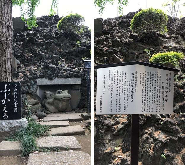 品川神社(品川区北品川)かえる