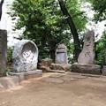 Photos: 品川神社(品川区北品川)