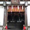 Photos: 品川神社(品川区北品川)亜那稲荷神社