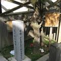 Photos: 10.11.02.品川北本宿 本陣/聖蹟公園(品川区北品川)